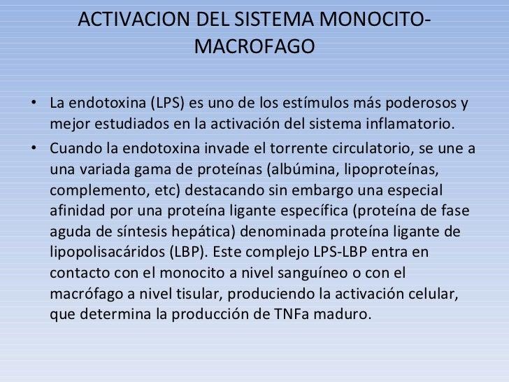 ACTIVACION DEL SISTEMA MONOCITO-MACROFAGO <ul><li>La endotoxina (LPS) es uno de los estímulos más poderosos y mejor estudi...