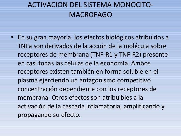 ACTIVACION DEL SISTEMA MONOCITO-MACROFAGO <ul><li>En su gran mayoría, los efectos biológicos atribuidos a TNFa son derivad...
