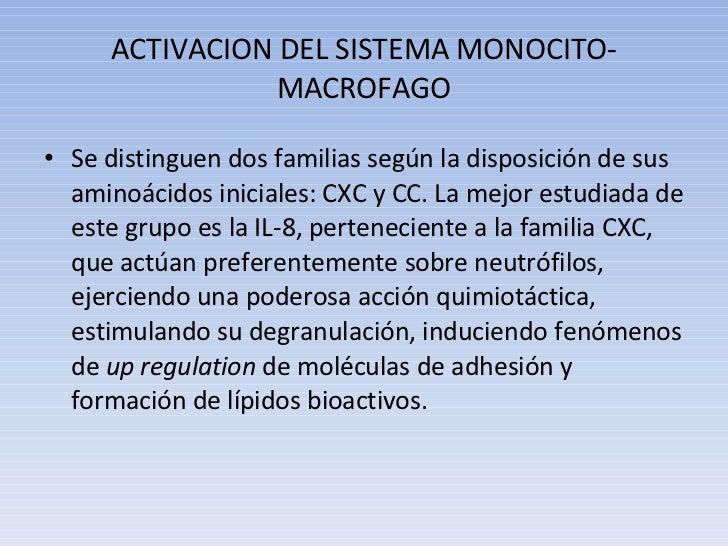 ACTIVACION DEL SISTEMA MONOCITO-MACROFAGO <ul><li>Se distinguen dos familias según la disposición de sus aminoácidos inici...