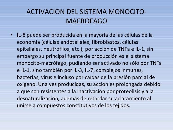 ACTIVACION DEL SISTEMA MONOCITO-MACROFAGO <ul><li>IL-8 puede ser producida en la mayoría de las células de la economía (cé...