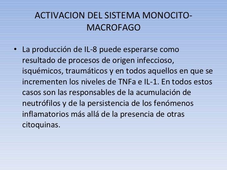 ACTIVACION DEL SISTEMA MONOCITO-MACROFAGO <ul><li>La producción de IL-8 puede esperarse como resultado de procesos de orig...