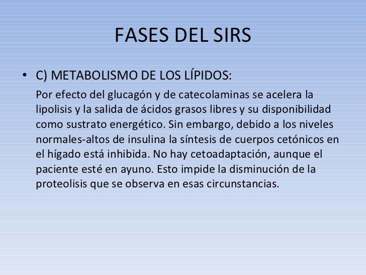 FASES DEL SIRS <ul><li>C) METABOLISMO DE LOS LÍPIDOS:  </li></ul><ul><li>Por efecto del glucagón y de catecolaminas se ace...
