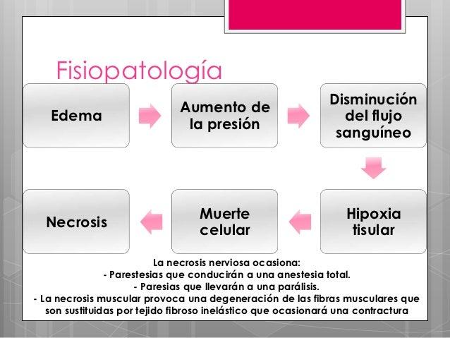 Fisiopatología           Isquemia          Reperfusión