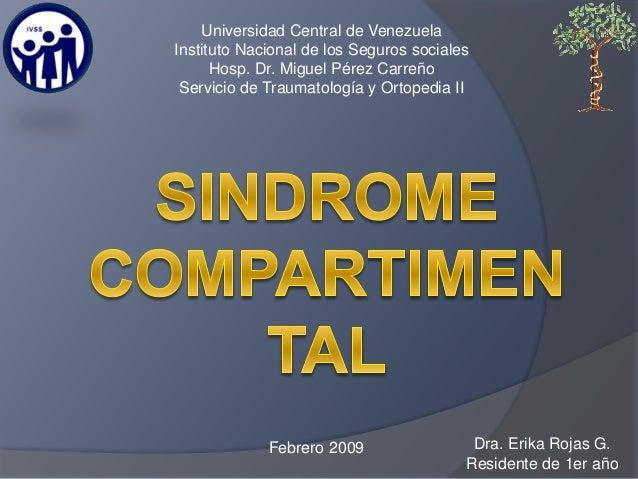 Dra. Erika Rojas G. Residente de 1er año Febrero 2009 Universidad Central de Venezuela Instituto Nacional de los Seguros s...