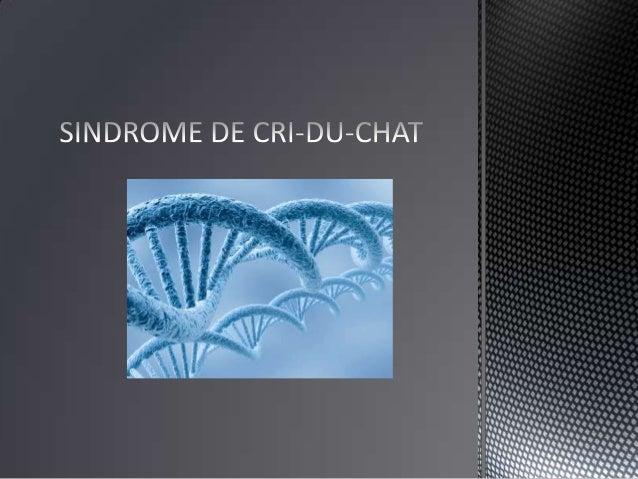 • El síndrome de Cri-du-chat, Cat´s  Cry o del maullido del gato es una  rara enfermedad congenita.• Descrita por Jérôme L...