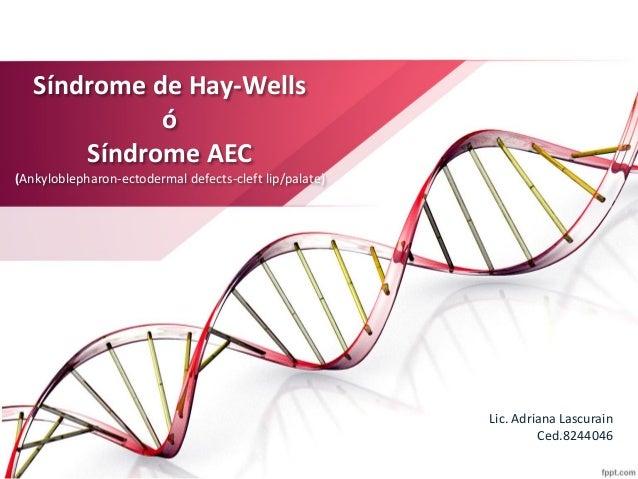 Síndrome de Hay-Wells ó Síndrome AEC (Ankyloblepharon-ectodermal defects-cleft lip/palate) Lic. Adriana Lascurain Ced.8244...