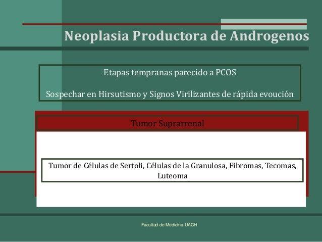 androgenos y anabolicos pdf
