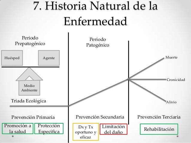 Cuadro Historia Natural De La Enfermedad Drogadiccin