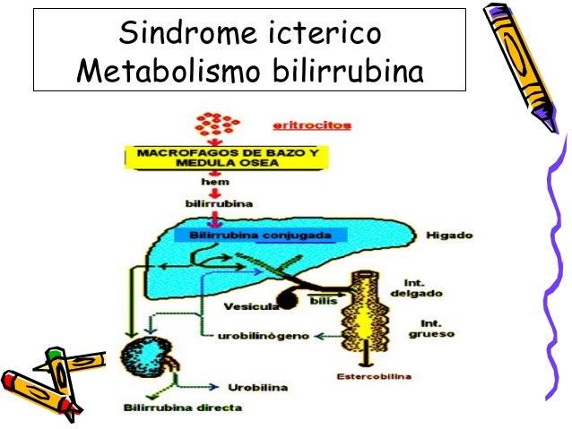 Cómo Acelerar metabolismo el camino espartano