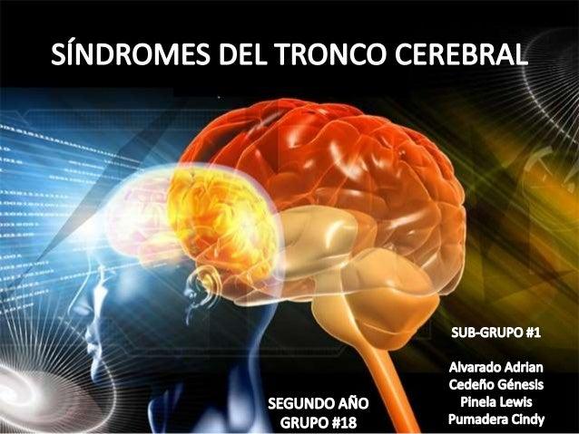 Síndrome bulbar medial o síndrome bulbar anterior de Dejerineque Oclusión de ramas paramedianas de la arteria vertebral o ...