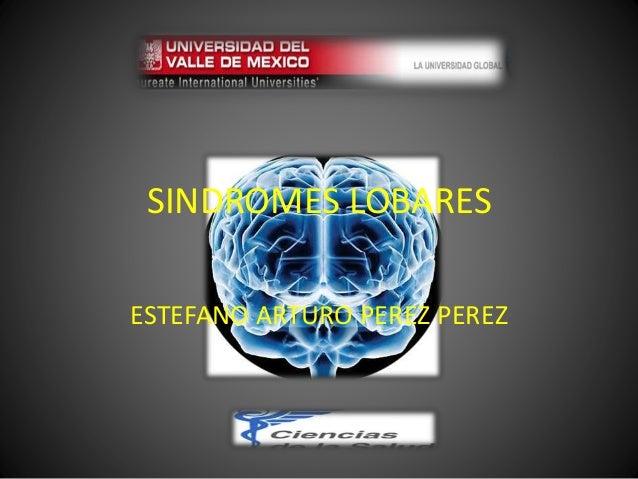 SINDROMES LOBARES ESTEFANO ARTURO PEREZ PEREZ