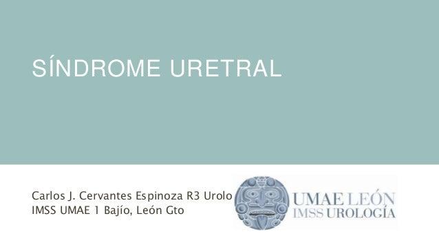 SÍNDROME URETRAL Carlos J. Cervantes Espinoza R3 Urología IMSS UMAE 1 Bajío, León Gto