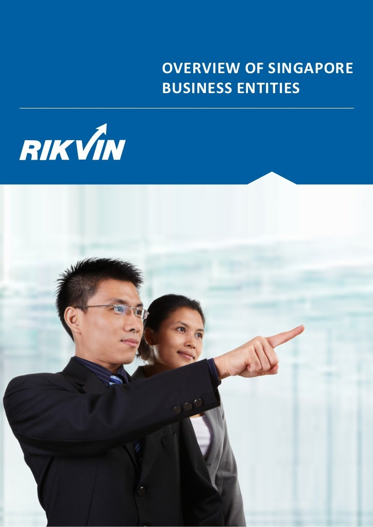 OVERVIEW OF SINGAPOREBUSINESS ENTITIES