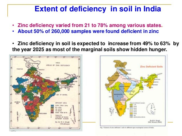 Singh agronomics for Soil zinc deficiency