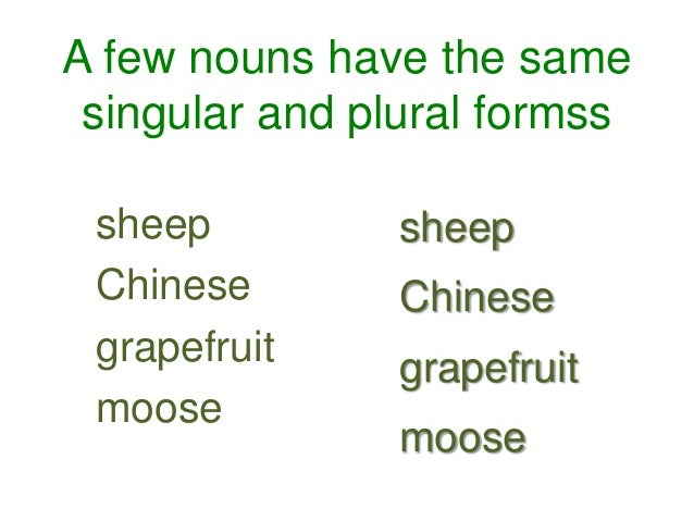 Singular And Plural Nouns Unit 2