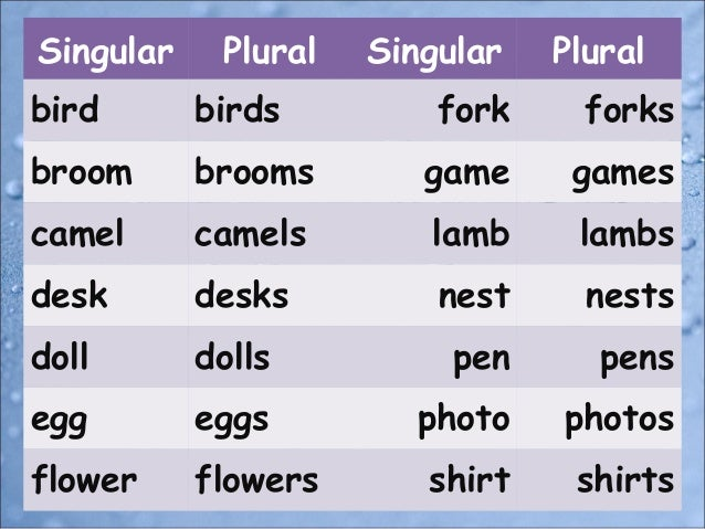 Singular And Plural Nouns 50658350 on Baby Zoo Animals