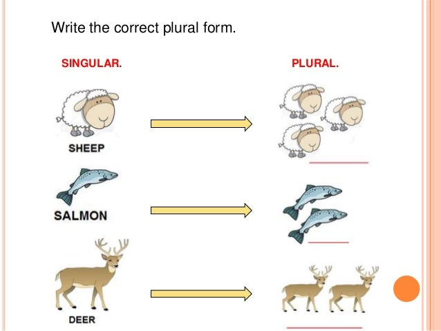 coursework plural or singular Singular and plural nouns - a lesson with interactive exercises all nouns, whether common or proper, can have either a singular or plural form a singular noun refers to one of something, while a plural refers to more than one of something.