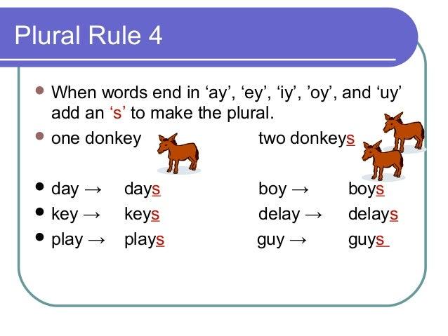 Singular Amp Plural Rules