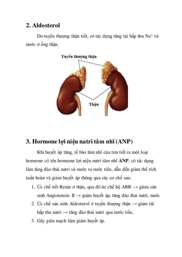 2. Aldosterol Do tuyến thượng thận tiết, có tác dụng tăng tái hấp thu Na+ và nước ở ống thận. 3. Hormone lợi niệu natri tâ...
