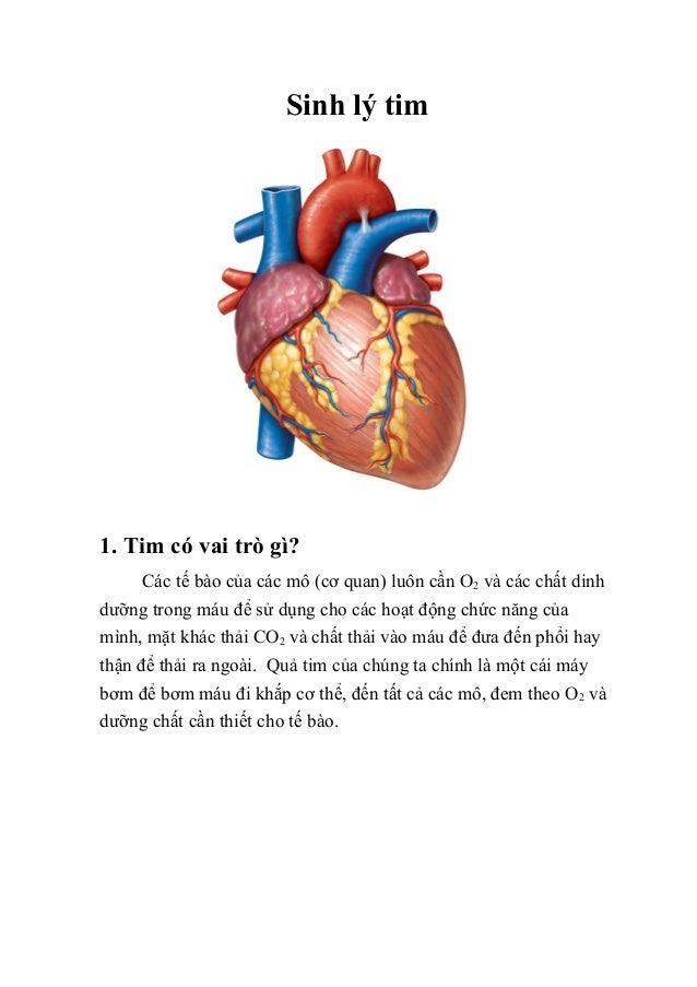 Sinh lý tim 1. Tim có vai trò gì? Các tế bào của các mô (cơ quan) luôn cần O2 và các chất dinh dưỡng trong máu để sử dụng ...
