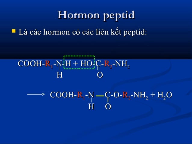 Hormon peptidHormon peptid  Là các hormon có các liên kết peptid:Là các hormon có các liên kết peptid: COOH-COOH-RR11-N-H...