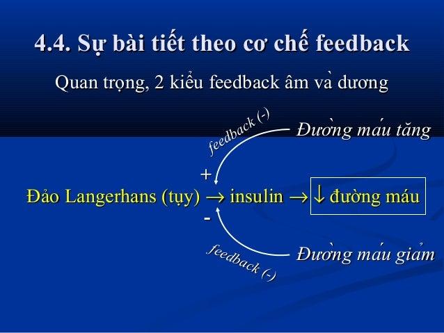 4.4. Sự bài tiết theo cơ chế feedback4.4. Sự bài tiết theo cơ chế feedback Quan trọng, 2 kiểu feedback âm và dươngQuan tr...