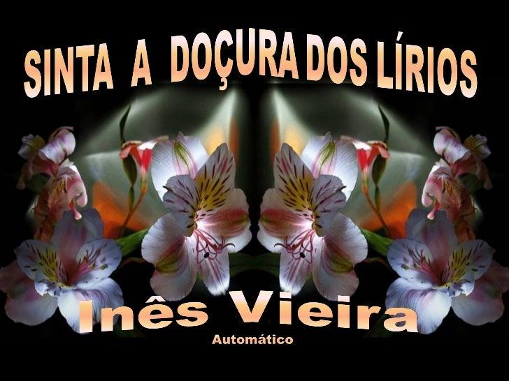 Criação: Inês Vieira       Imagens: Internet Música: kenny g- instrumentalwedding songs - piano - first love    inesdedes@...