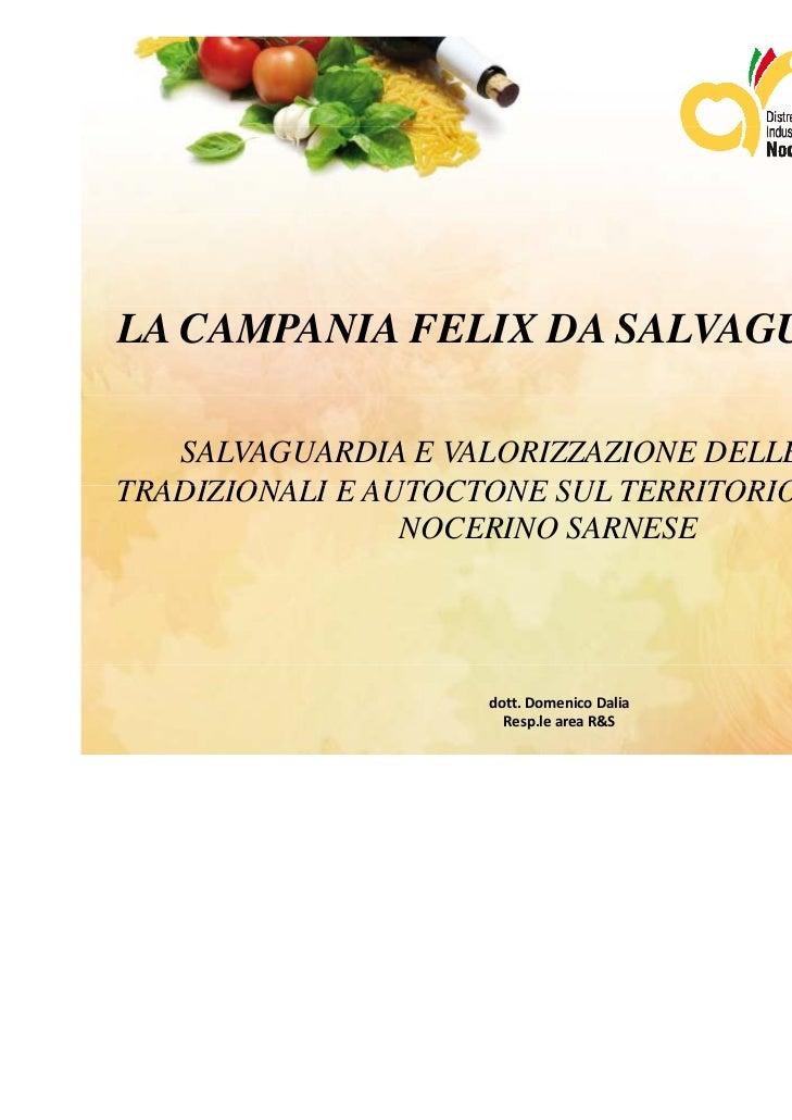 LA CAMPANIA FELIX DA SALVAGUARDARE   SALVAGUARDIA E VALORIZZAZIONE DELLE SPECIETRADIZIONALI E AUTOCTONE SUL TERRITORIO DEL...