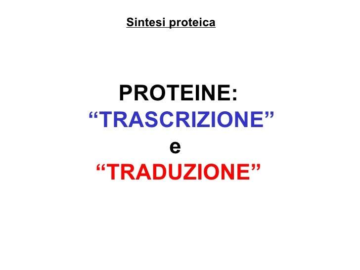 """Sintesi proteica PROTEINE: """" TRASCRIZIONE"""" e  """" TRADUZIONE"""""""