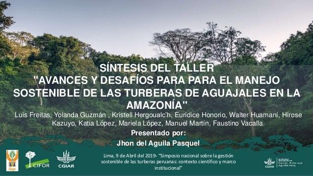 """SÍNTESIS DEL TALLER """"AVANCES Y DESAFÍOS PARA PARA EL MANEJO SOSTENIBLE DE LAS TURBERAS DE AGUAJALES EN LA AMAZONÍA"""" Luis F..."""