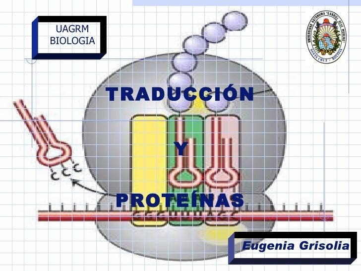 TRADUCCIÓN  Y   PROTEÍNAS  UAGRM BIOLOGIA Eugenia Grisolia
