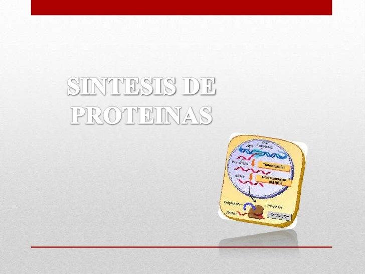 SINTESIS DE PROTEINAS<br />