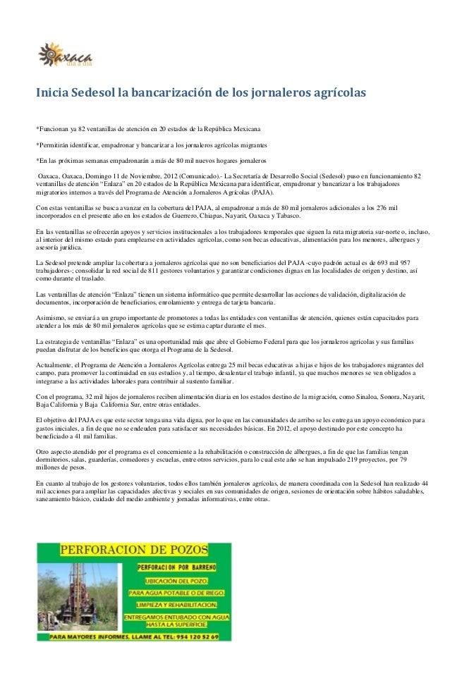 Inicia Sedesol la bancarización de los jornaleros agrícolas*Funcionan ya 82 ventanillas de atención en 20 estados de la Re...