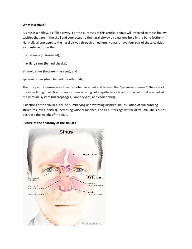 What is a sinus?A sinus is a hollow, air-filled cavity. For the purposes of this article, a sinus will referred to those h...