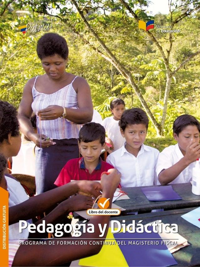 2 CursodePedagogíayDidáctica Ministerio de Educación - Educamos para tener Patria