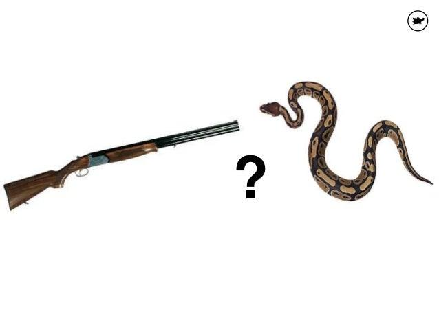 Asia on niin, että suomalaiset ovat aikoinaan aivan oikeasti ajaneet käärmeitä pyssyyn. Kyseessä on metsästäjien taika. Es...