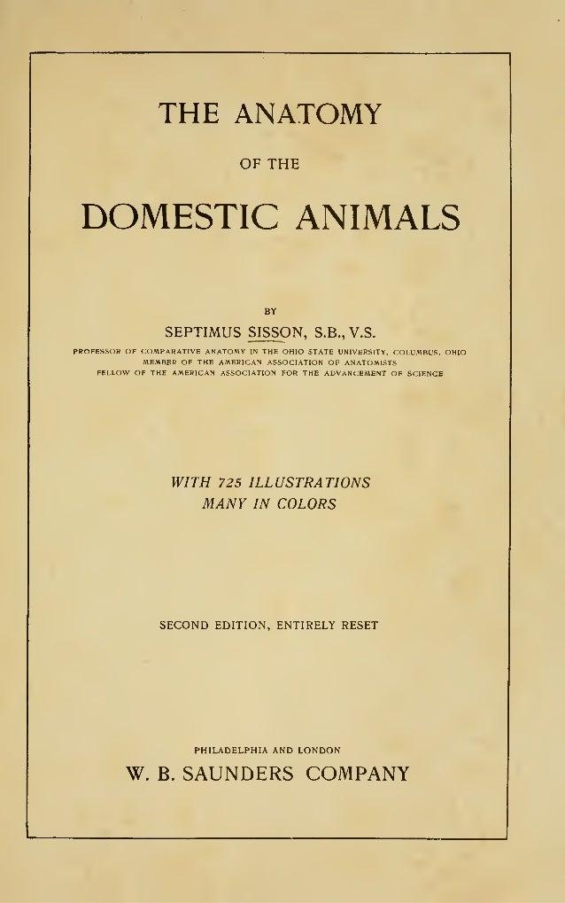Sisson\'s anatomy (veterinary)