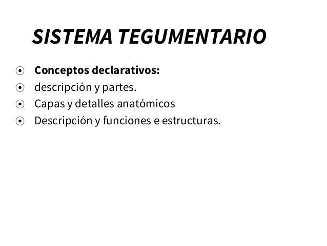 SISTEMA TEGUMENTARIO ⦿ Conceptos declarativos: ⦿ descripción y partes. ⦿ Capas y detalles anatómicos ⦿ Descripción y funci...