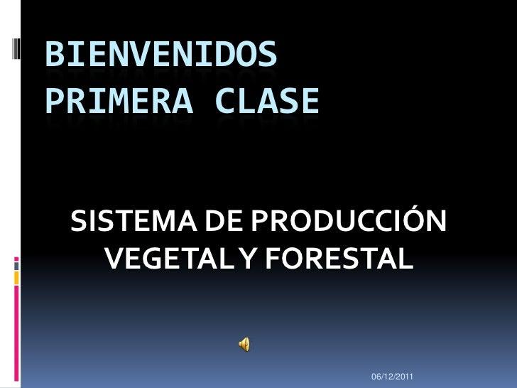 BIENVENIDOSPRIMERA CLASE SISTEMA DE PRODUCCIÓN   VEGETAL Y FORESTAL                 06/12/2011