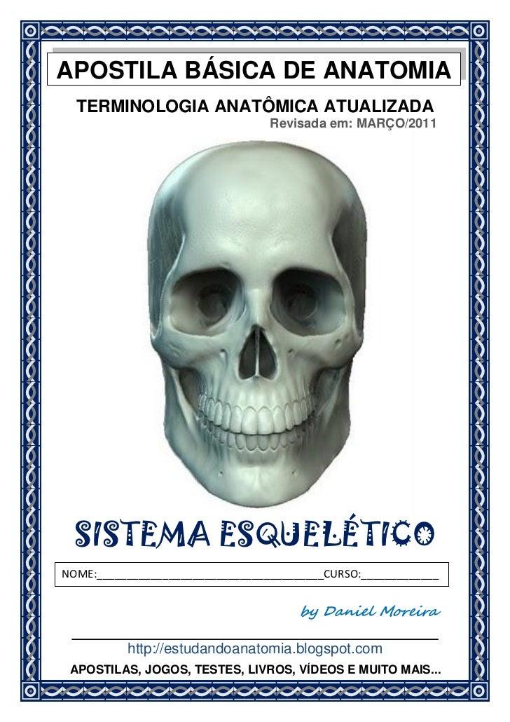 APOSTILA BÁSICA DE ANATOMIA  TERMINOLOGIA ANATÔMICA ATUALIZADA                                  Revisada em: MARÇO/2011  S...