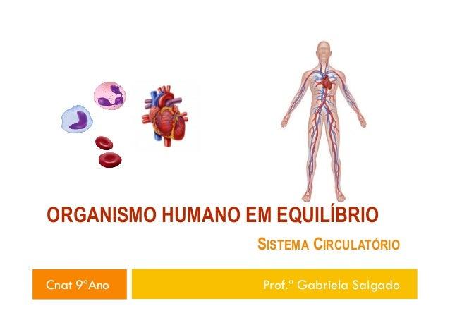 ORGANISMO HUMANO EM EQUILÍBRIO SISTEMA CIRCULATÓRIO Cnat 9ºAno Prof.ª Gabriela Salgado