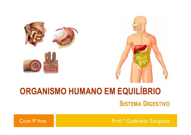 ORGANISMO HUMANO EM EQUILÍBRIO SISTEMA DIGESTIVO Cnat 9ºAno Prof.ª Gabriela Salgado