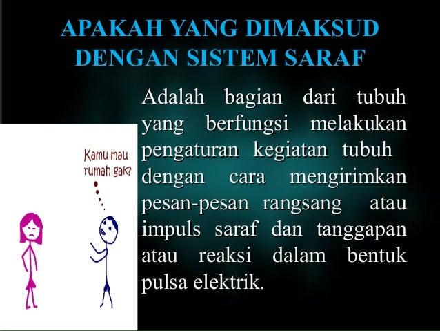 Sistem Saraf Manusia Slide 2