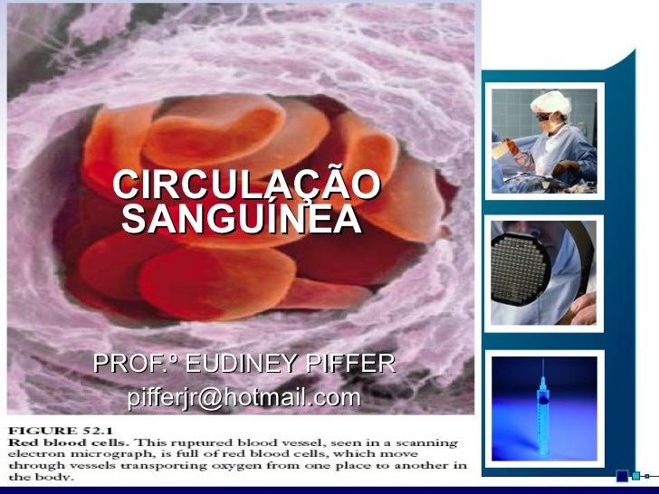 CIRCULAÇÃO SANGUÍNEA  PROF.º EUDINEY PIFFER [email_address]