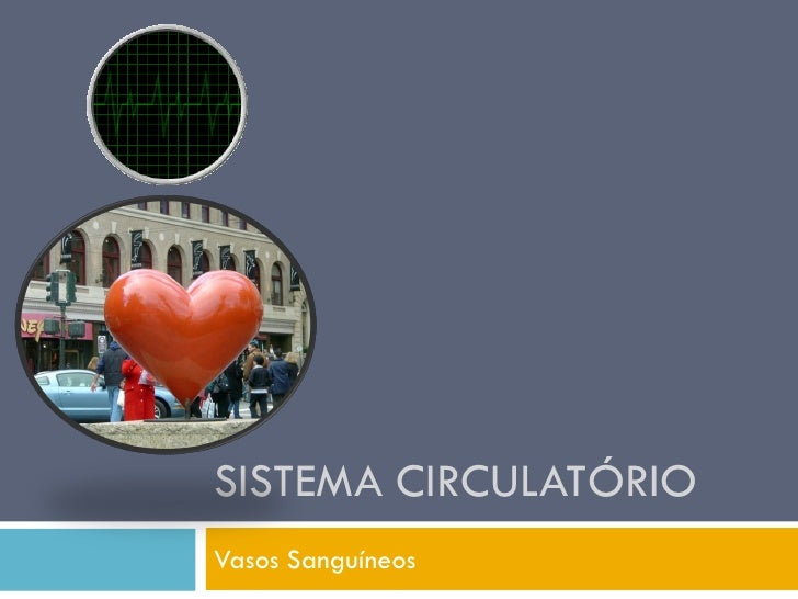 SISTEMA CIRCULATÓRIO Vasos Sanguíneos