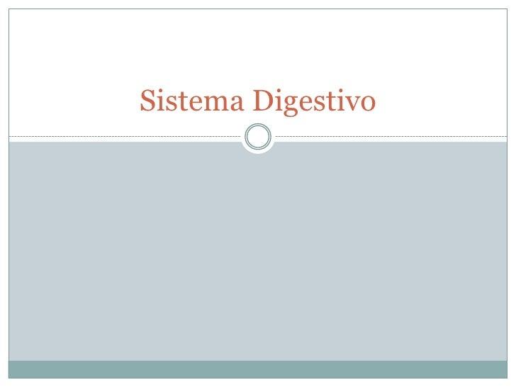 Sistema Digestivo<br />
