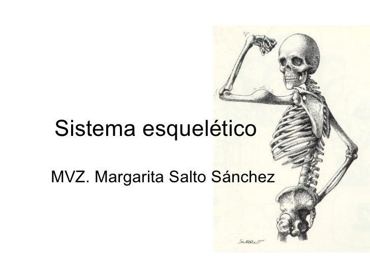 Sistema esquelético MVZ. Margarita Salto Sánchez