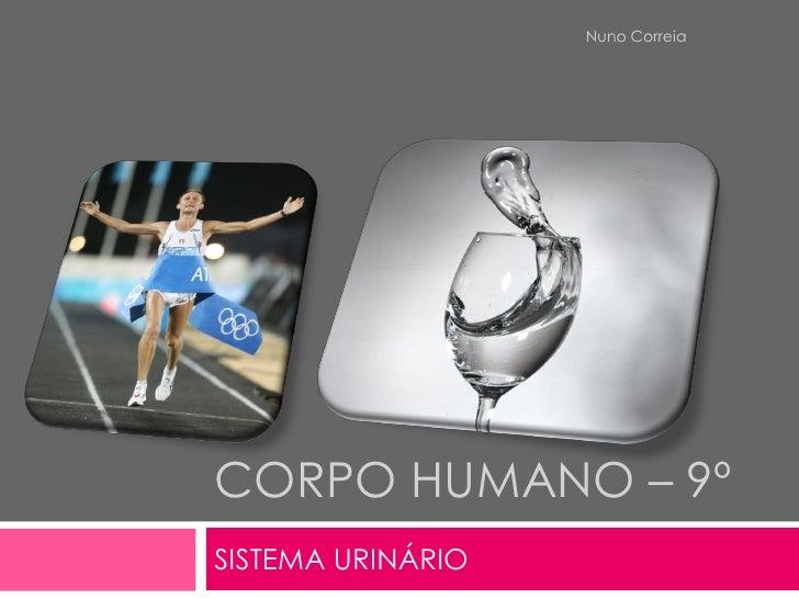 Nuno Correia     CORPO HUMANO – 9º SISTEMA URINÁRIO
