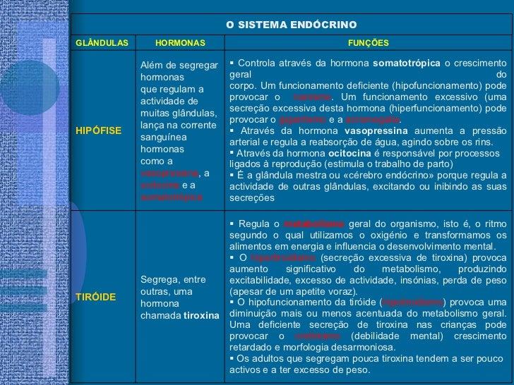 <ul><li>Regula o  metabolismo  geral do organismo, isto é, o ritmo segundo o qual utilizamos o oxigénio e transformamos os...