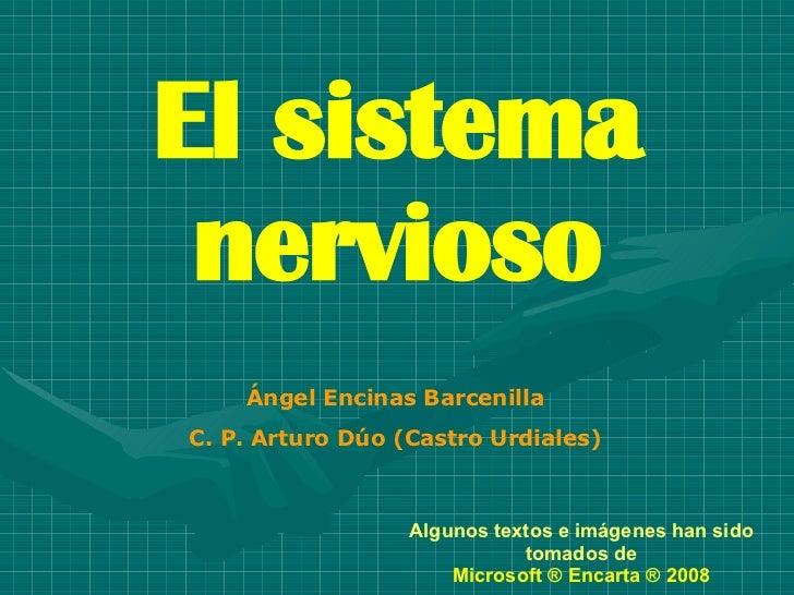 El sistema nervioso Ángel Encinas Barcenilla C. P. Arturo Dúo (Castro Urdiales) Algunos textos e imágenes han sido tomados...